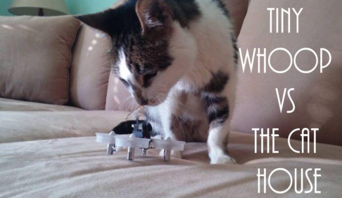 Tips Aman Bermain Micro Drone Hewan